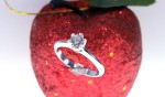 Anello Solitario diamante 31   €  2030,00